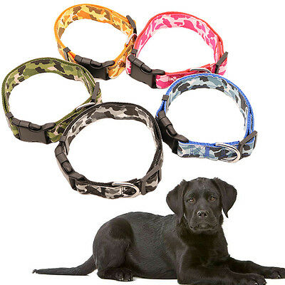 Adjustable Durable Nylon Dog Puppy Pet Collar Buckle and Clip for Lead Safety