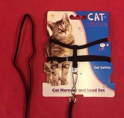 Cat Kitten Harness And Lead Set Black Strong Nylon 53 Inch Lead Toy Dogs