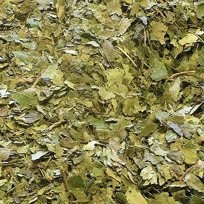 BIRCH LEAF Betula pendula roth DRIED Herb, Loose Natural Tea 50g