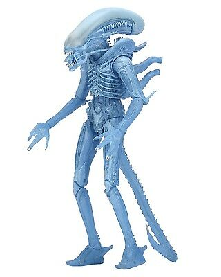 "Aliens - 7"" Scale Action Figure - Series 11 - Kenner Blue Warrior Alien - NECA"