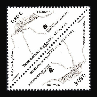 TAAF 2017 -  Insect of Crozet Island - MNH