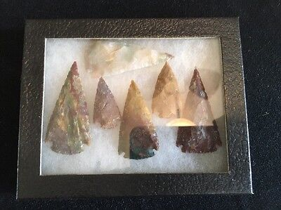 Arrowheads In Glass Display Box, Lot Of Six
