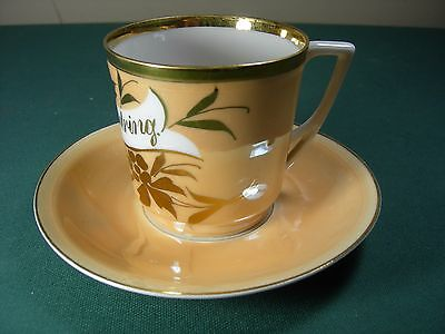 """German Altwasser Silesia Ct Cup & Saucer  Danish Til Erindring """"to Remembrance"""""""