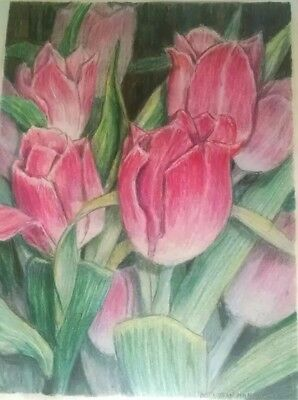 "PINK TULIPS drawing ORIGINAL art BETTY MANICHL colored pencil OHIO 12"" x 16"""