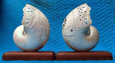 BEST PAIR CARVED dated 1887 Antique NAUTILUS SHELLS MANILA, PHILIPPINES MOP NR