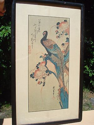 Antique Export 1890-1900 Japanese Chinese Woodblock Print Paradise Bird Signed
