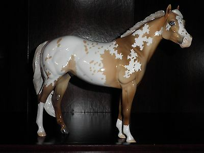 Peter Stone 2012 EFC EQ Appy Sooty Palomino ISH  ** GLOSSY**