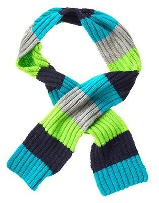 Gymboree Buffalo Lodge Navy Teal Lime & Gray Striped Sweater Scarf 1-Size Nwt