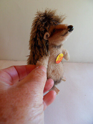 Steiff hedgehog  porcupine  mohair  begging all IDs made in Germany 977