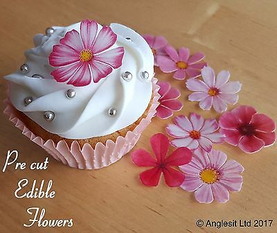 . Pre-Cut Beautiful Pink Flowers Edible Wafer Paper Cup Cake Topper Decoration