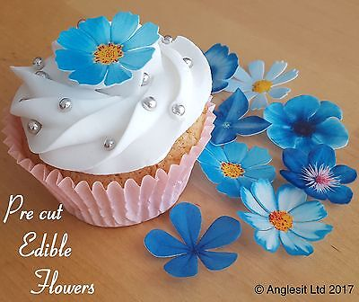 . Pre-Cut Beautiful Blue Flowers Edible Wafer Paper Cup Cake Topper Decoration