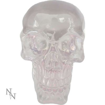 Novelty Clear Skull Paperweight Sculpture Ornament