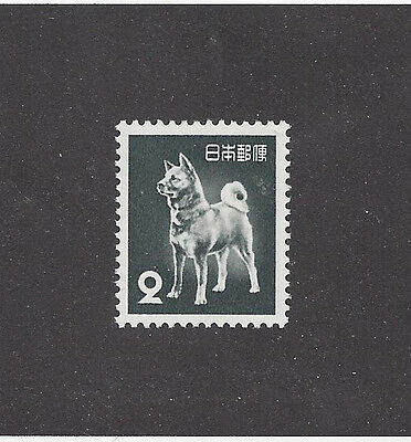 Rare Art Body Study Portrait Postage Stamp AKITA INU Japan 1953 National Dog MNH