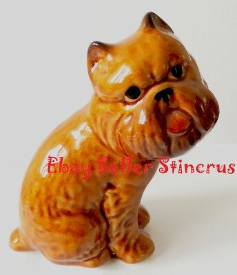 Brussels Griffon figurine dog brown. Author's Porcelain figurine + Gift Box NEW