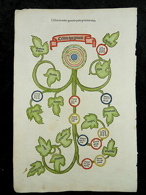 Boccaccio Genealogia Incunable Woodcut Paris 1511 Celius Genealogical Tree I76