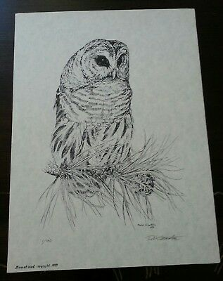 Barred Owl by Peter Karsten Lithograph signed and numbered 1/150, created 1975