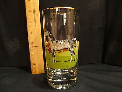 G A Patton Arabian Horse Glass Tumbler Gold Rim
