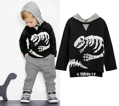 Baby Boy Kid Dinosaur Hooded Clothes Hoodies T-shirt Pullovers +Pants Outfit set