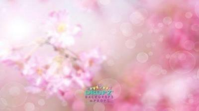 NEW High Quality Photography Backdrop Pink Floral Bokeh