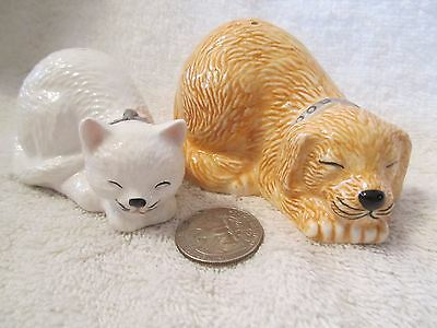 Kitty And Puppy Salt And Pepper Shakers