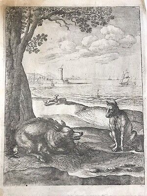 Wenceslaus HOLLAR;1652.LUPO e SCROFA.acquaforte.PRAGA