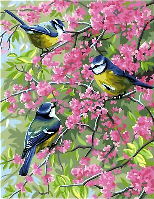 Royal Paris Tapestry/Needlepoint Kit - Blue Tits in the Flowers