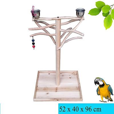 Parrot Tree Bird Stand Wood Parrot Stand Bird Stand Tree Toy Play Gym Center