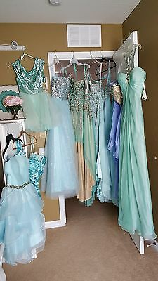 Evening/Special Occasion/Pageant Gowns Women's Variety of Brands - LOT of 10