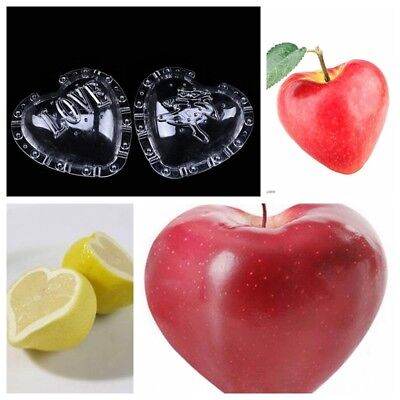 1x Heart shape Garden Fruits Vegetable Pear Lemon Shaping Mold Growth Form Mould
