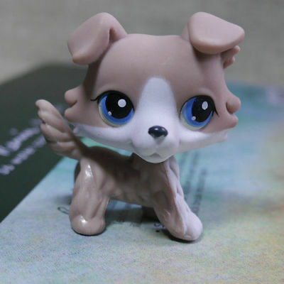 Brown Collie Colley dog pubby #67  LPS Action Figure LITTLEST PET SHOP