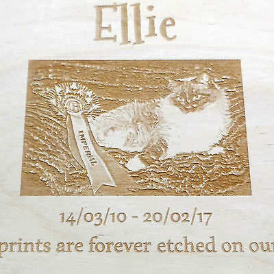 Memorial Engraved Wooden Pet Urn Ashes Box Dog Urn Photo Engraved Cremation Box