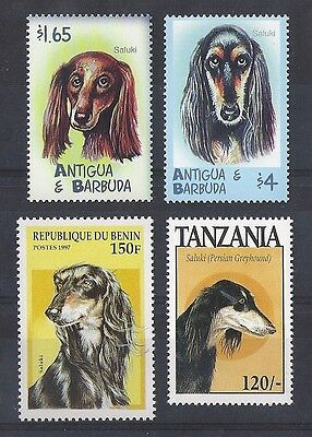 Dog Art Postage Stamp Collection 4 SALUKI Head Studies 4 Different MNH