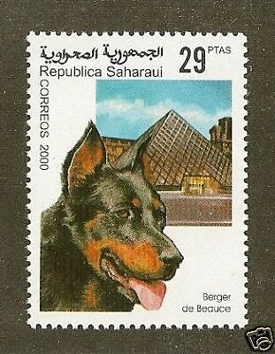 RARE Dog Art Stamp BEAUCERON BERGER DE BEAUCE Head Study Spanish Sahara MNH