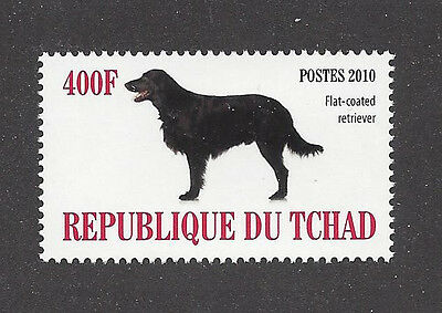 Dog Photo Body Portrait Postage Stamp FLAT COATED RETRIEVER Chad Africa 2010 MNH