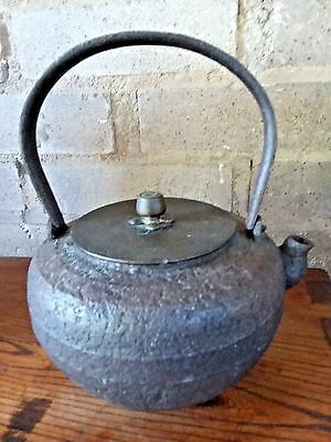 Antique Japaneses Tetsubin Cast Iron Water Kettle Signed By Long Wen Tang