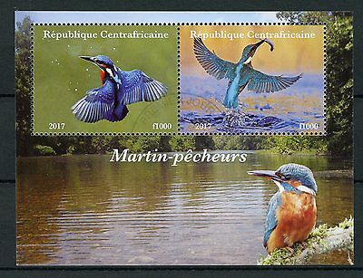 Central African Rep 2017 CTO Kingfishers 2v M/S I Kingfisher Birds Stamps
