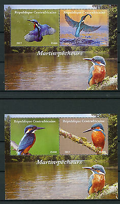 Central African Rep 2017 MNH Kingfishers 2x 2v M/S Kingfisher Birds Stamps