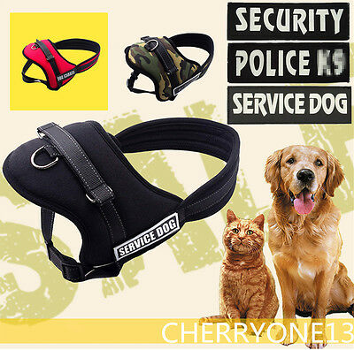 No Pull Adjustable Dog Vest Harness Collar W/ Patches for Pitbull Husky S M L XL
