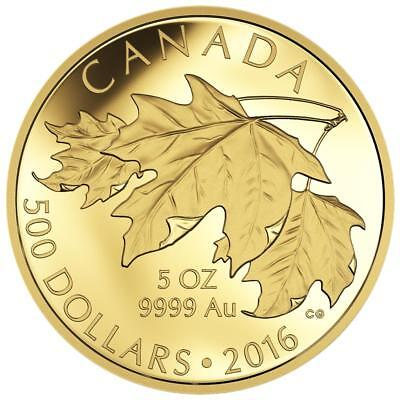 Kanada 500 Dollar 2016 - The Glorious Maple Leaf - 2. Ausgabe - 5 Unzen Gold PP