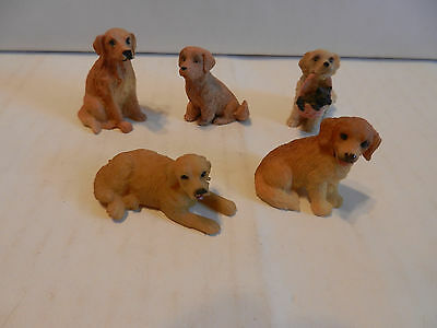"Lot of 5 Collectible Golden Retriever Mini's 1 1/2"" - 2"" (C)"