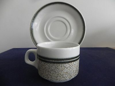 Royal Doulton Steelite Hotelware Country Club Cup and Saucer