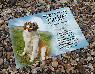 Personalised white cermaic tile headstone memorial plaque Saint Bernard dog gift