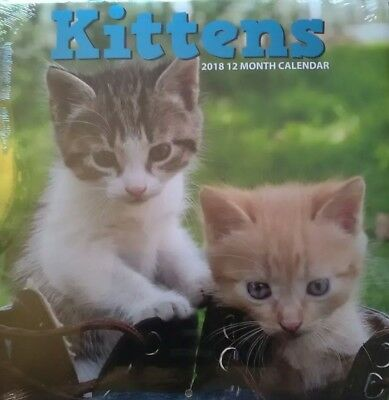 2018 12 Month Calendar Kittens Monthly Page Format