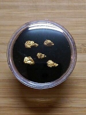 1.07 Grams of Natural Australian Gold Nuggets (5) Gift or Investment