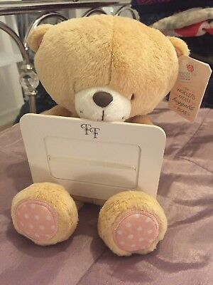 Brand New Forever Friends Teddy With Picture Frame (tag Attached)