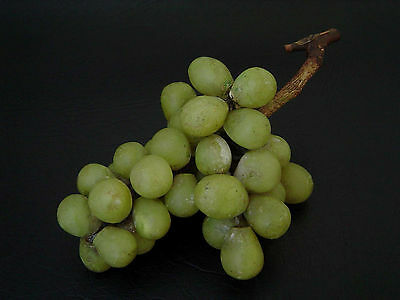 NICE VINTAGE CARVED STONE ALABASTER GREEN GRAPES BUNCH MARBLE FRUIT (1of3)