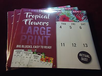2018 Wall Calendar  TROPICAL FLOWERS LARGE PRINT  Easy To Read  {MSRP $9.99}