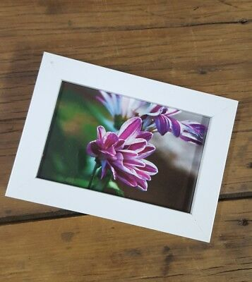 framed floral flower photo photography print home decor room wallart bedside