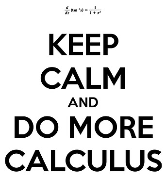 Calculus Solutions to First Year Problems