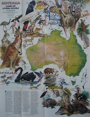 AUSTRALIA ANIMAL MAP Koala Platypus Kangaroo Wallaby Dingo Tasmanian Devil Emu